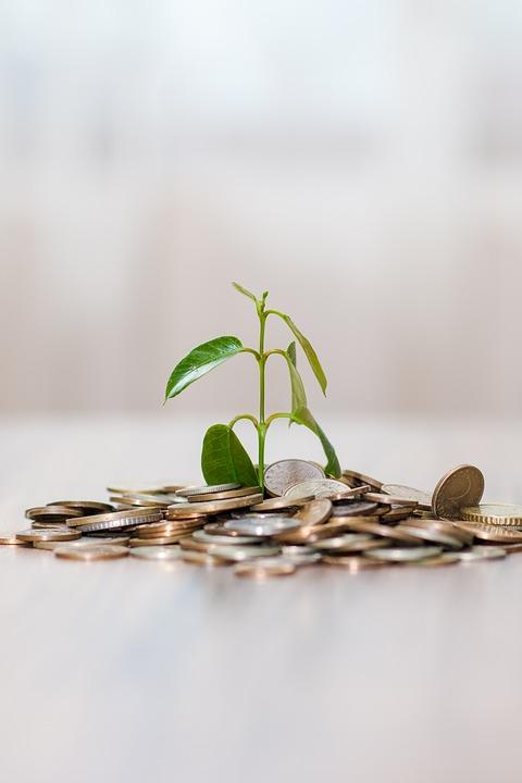 Investors, Smart Finch Properties